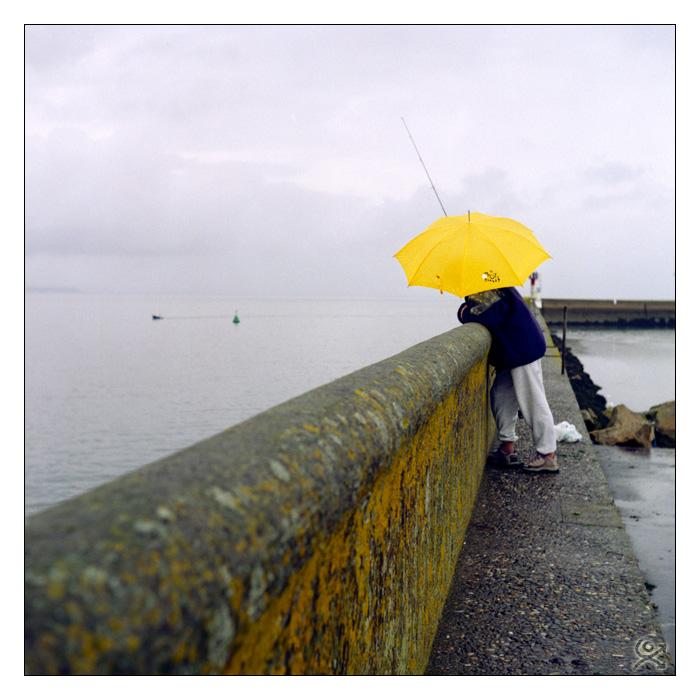 Le parapluie jaune