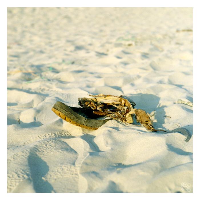 Sage celui qui évite le sable