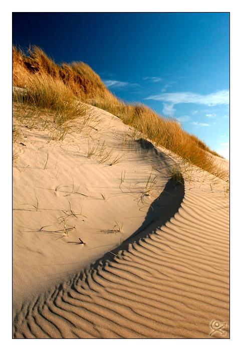 Un autre regard sur la dune